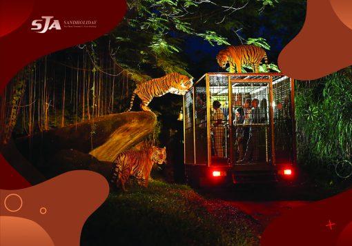 Harga Tiket Masuk Bali Zoo Park 2019 Bali - Sandholiday