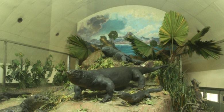 Museum Komodo dan Taman Reptil